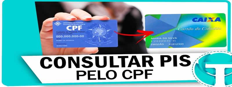 Como Consultar o PIS Pelo CPF? Passo a Passo